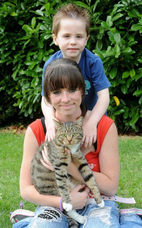 Britain's bravest cat