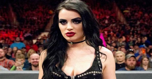 Will Paige Wrestle Again?