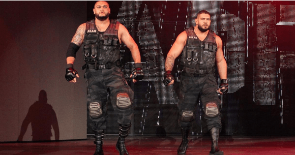 Authors Of Pain
