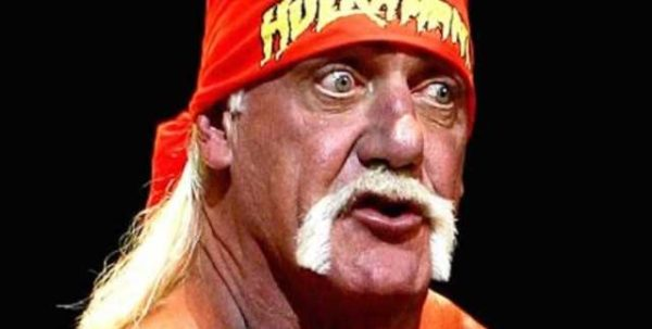 Hogan's racist statements