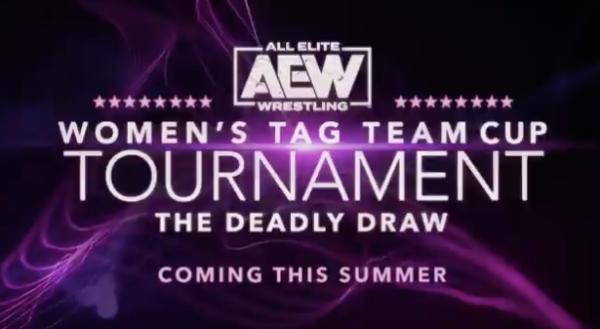 AEW women's tag team division
