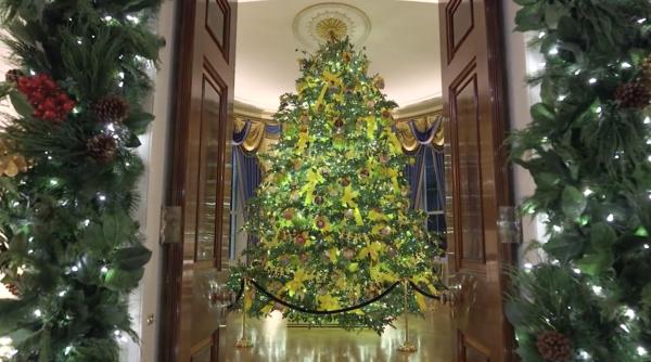 Blue Room White House Christmas 2020