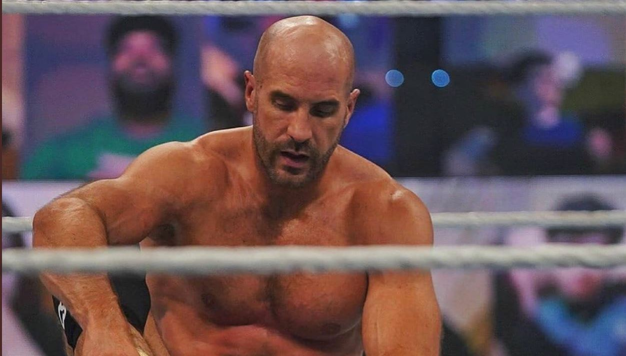 whats next for cesaro